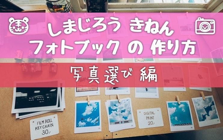 しまじろう記念フォトブックの作り方 写真選び編