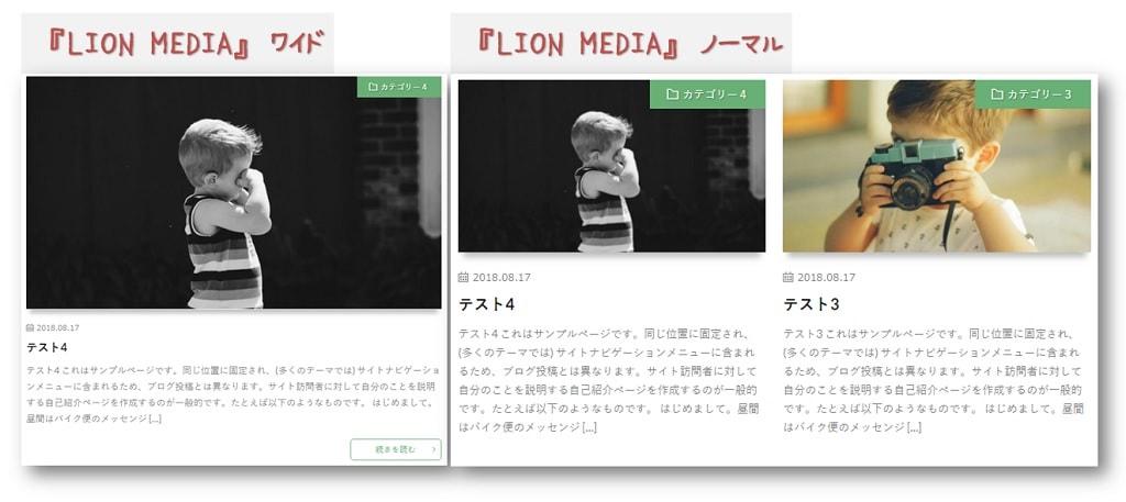 『LION MEDIA』ワイド/ノーマル